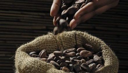 Opinie koffie oxfam wereldwinkels