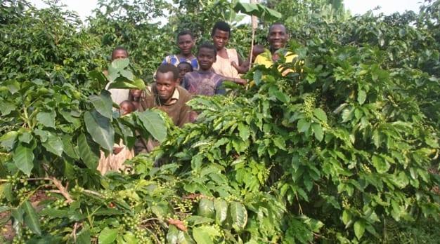 Ankole CPCU uit Oeganda