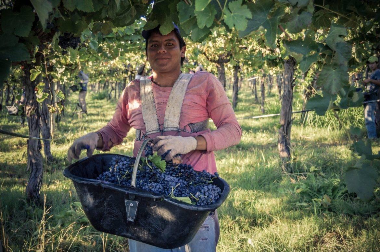 La Riojana uit Argentinië