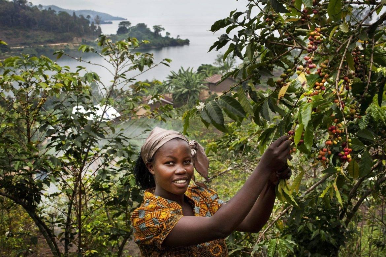 Muungano uit DR Congo