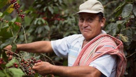 Norandino uit Peru
