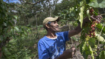 Prodecoop uit Nicaragua