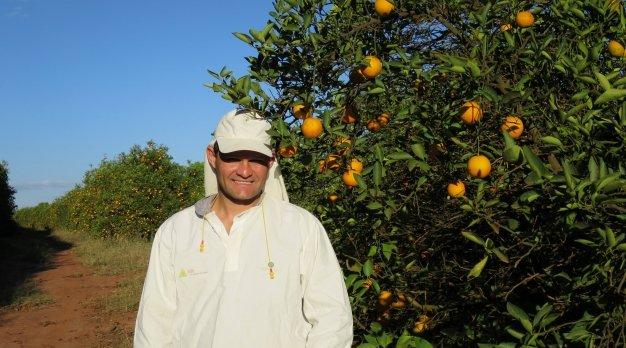 Sinaasappelboer