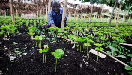 Agro-ecologie is landbouw op mensenmaat Oxfam artikel