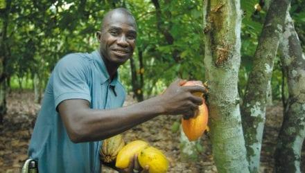 Cacaoboer verdient zijn brood niet met chocolade Oxfam artikel