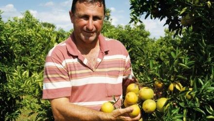 De evolutie naar biologische productie Oxfam artikel