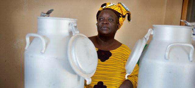 Ook Afrikaanse boeren lijden onder lage melkprijzen in Europa Oxfam artikel