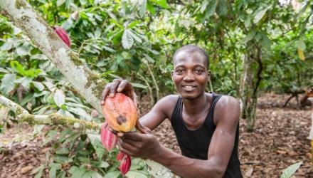 Partnerschap voor duurzame Belgische chocolade Oxfam artikel
