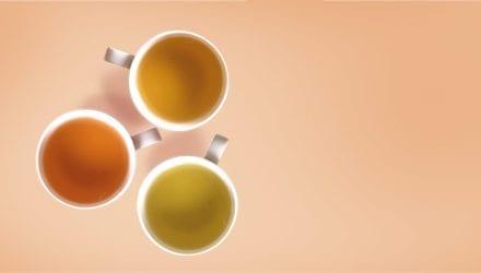 Thee in geuren en kleuren Oxfam artikel