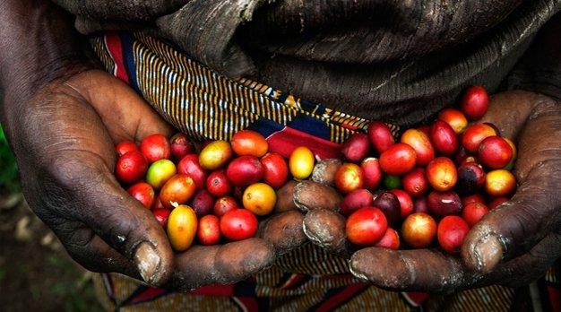Van bes tot boon Oxfam artikel