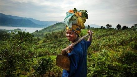 Voedsel Anders: agro-ecologische landbouw Oxfam artikel