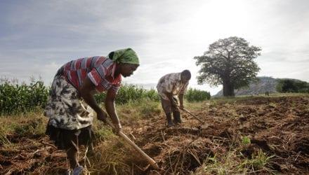 Waarom je in actie moet komen voor het klimaat. Oxfam artikel