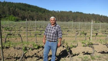 Wijn in evenwicht met de natuur Oxfam artikel